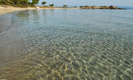 Karidi Beach Sithonia